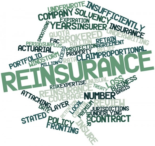 reinsurance-words